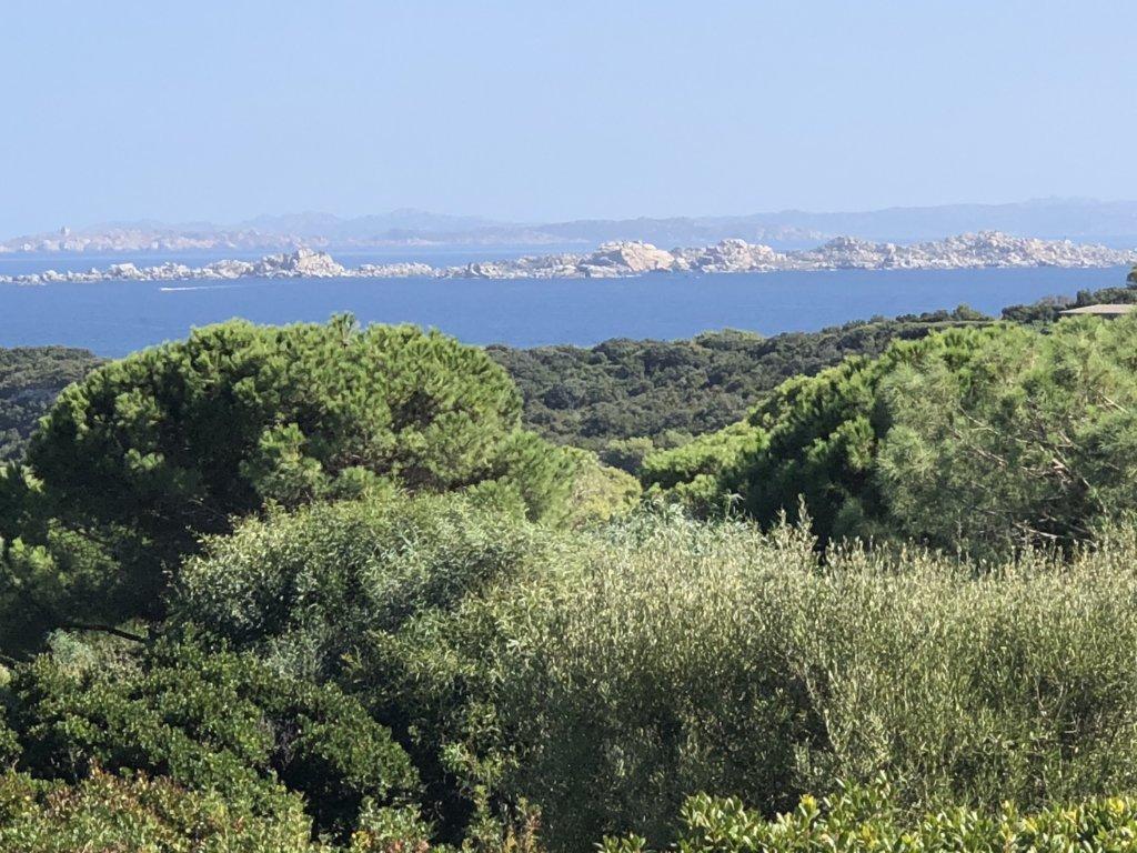 Sperone : Un paradis en Corse du Sud : Les Lavezzi